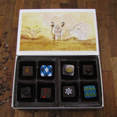 Bellafina-Chocolates-8pc-Kuda-Vana-elephants.jpg